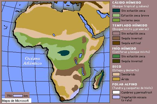 Vegetación africana en la actualidad, fuente: http://geografia.laguia2000.com/economia/africa-economia-y-poblacion