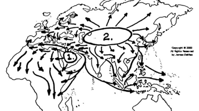El origen de las sociedades de dominación
