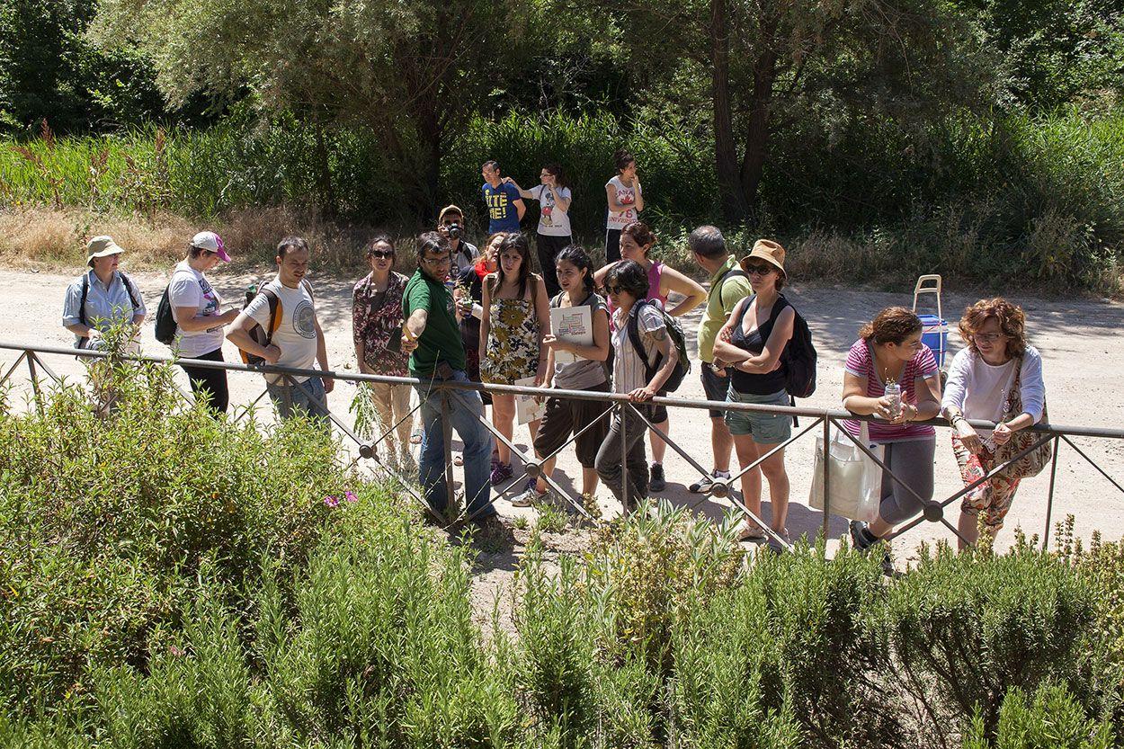 Bilal Paladini, Geógrafo por la Univ. Sevilla y Agricultor, explica durante el desarrollo del curso Ruta de Plantas Comestibles impartido por Larutanatural en Junio de 2013