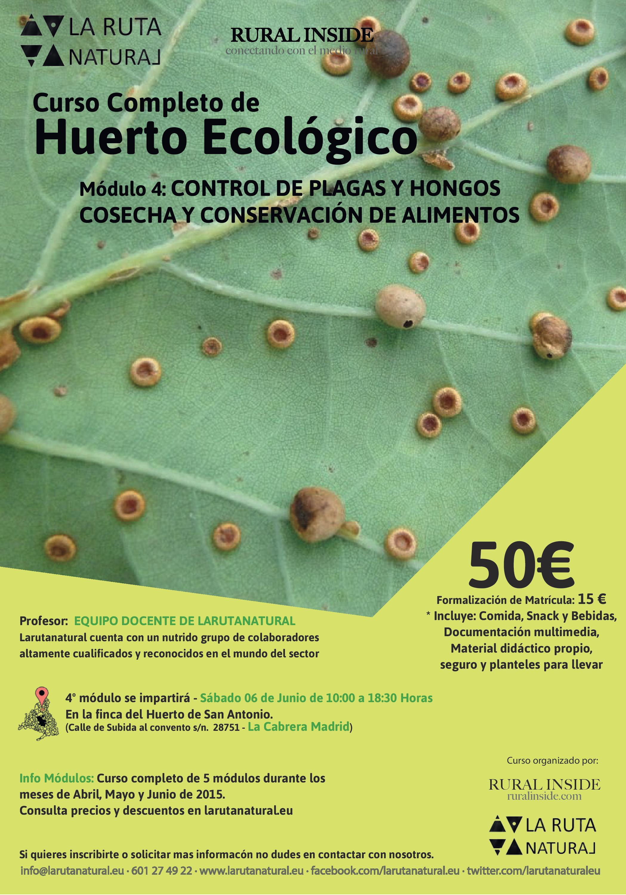Curso Completo Huerto Ecológico – Módulo IV – Control de Plagas y Hongos + Conservas