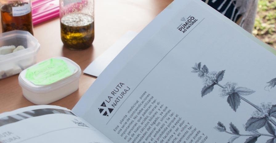 Detalle del documento elaborado por Larutanatural y aceite esencial de manzanilla Foto: Larutanatural - Roberto González