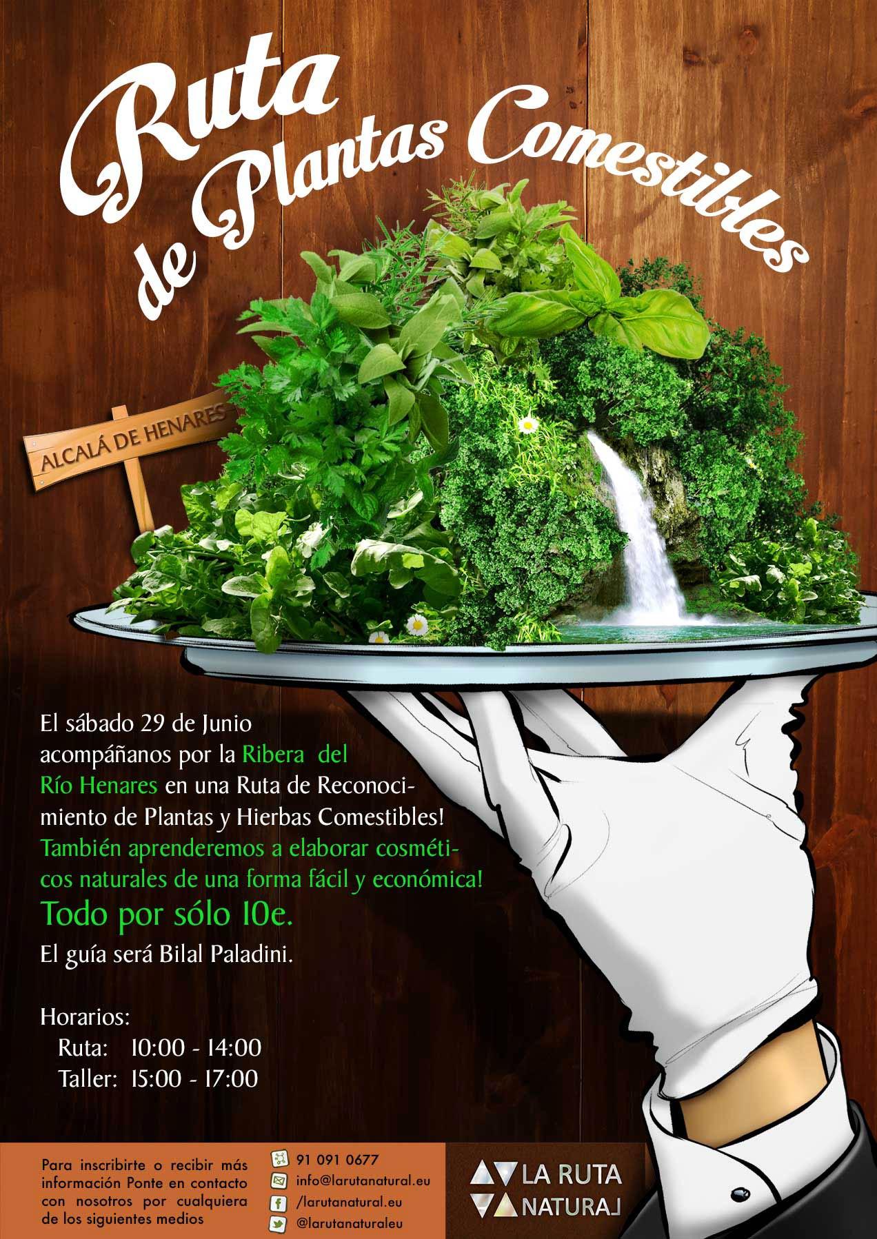 El sábado 29 de Junio  acompáñanos por la Ribera  del  Río Henares en una Ruta de Reconocimiento de Plantas y Hierbas Comestibles! También  prenderemos a elaborar cosméticos naturales de una forma fácil y Económica!