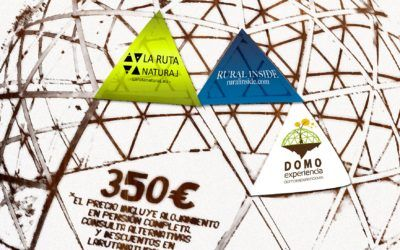 Curso Bioconstrucción Domo Geodésico de Madera