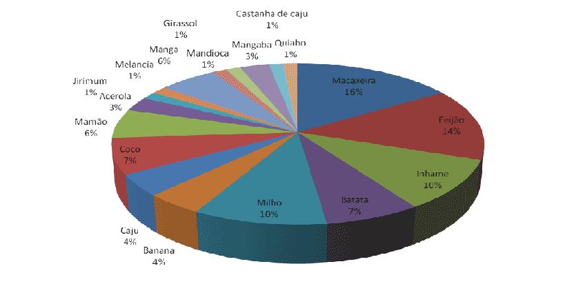 Figura 2. Principales productos producidos por los asentados (Paladini, 2009).